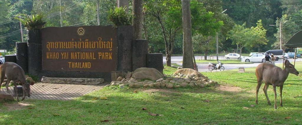 Parco Nazionale di Khao Yai